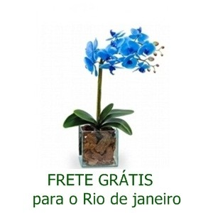 Orquídea  Azul no Vidro