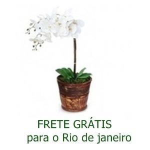 Orquidéa Branca Cachepot de Madeira
