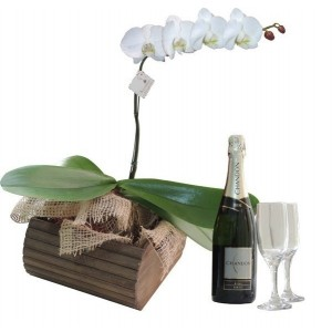Orquídea Com Chadon  Brut 750ml